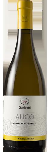 CVA Alico - Inzolia – Chardonnay - CVA Canicattì
