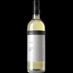 Alico - nero - d avola - CVA Canicattì - Vini Siciliani